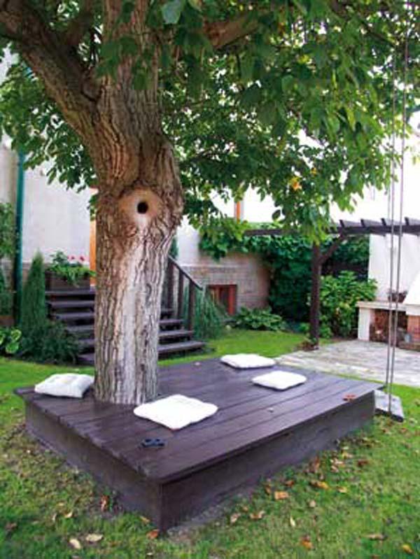 sediste oko drveta 7
